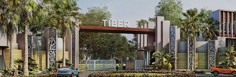 Cluster Tiber